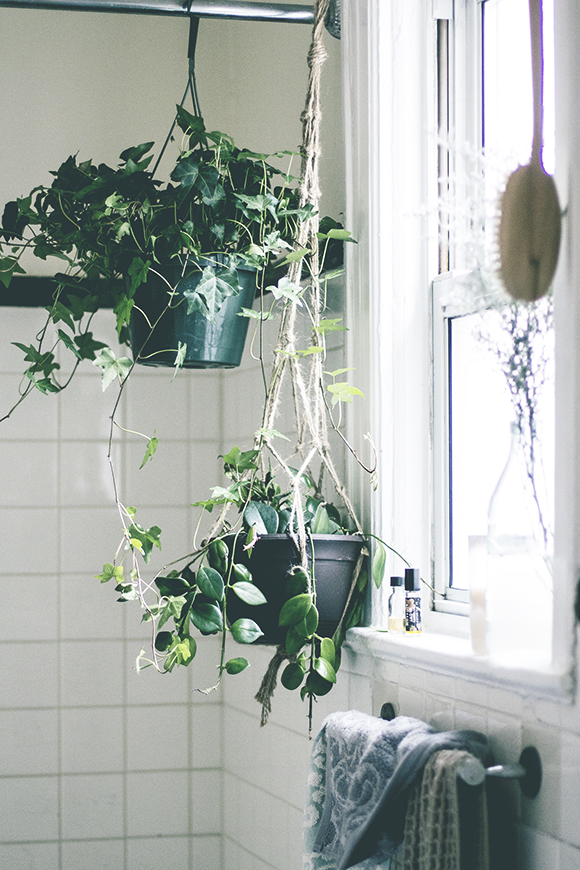 8 ways to make a rented apartment feel like home for Ways to hang plants inside