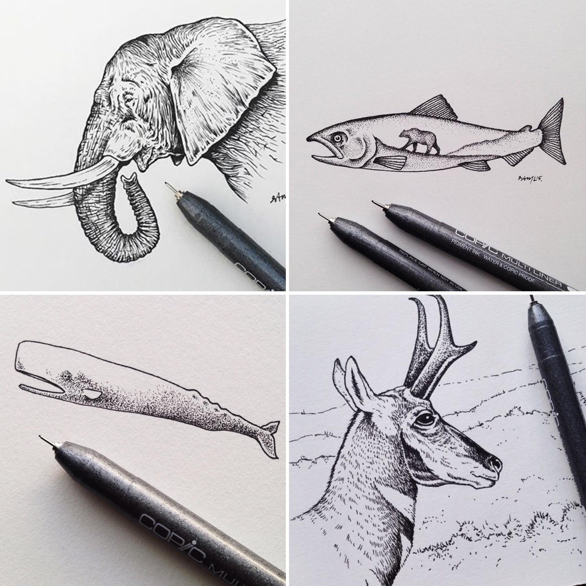 sam-larson-artist-illustrations