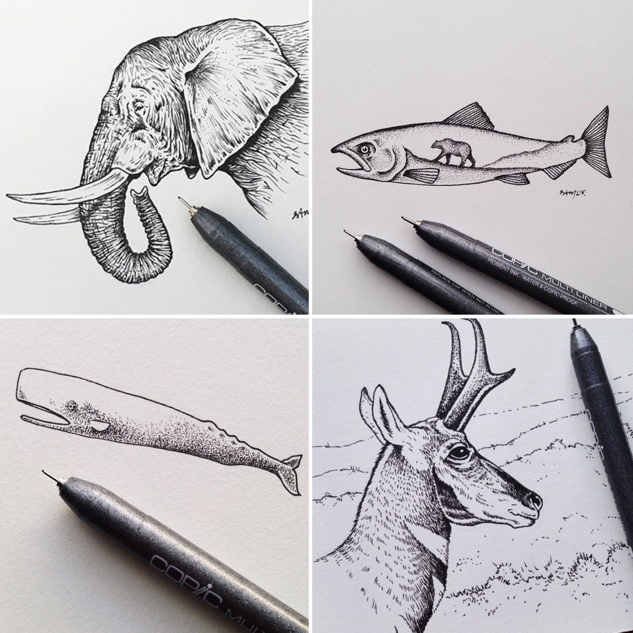 sam-larson-artist-illustrations