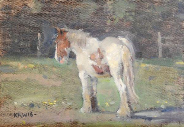 kieron-williamson-4